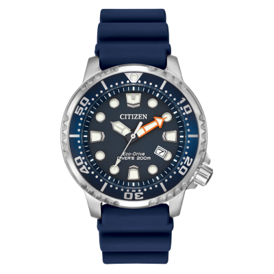 PROMASTER DIVER BLUE DIAL WR 200